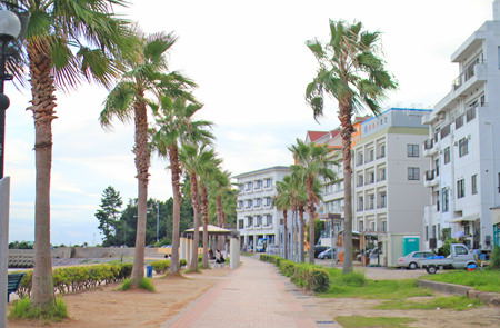 ワイキキビーチが一望できるカフェ『プルメリア』~愛知県西尾市