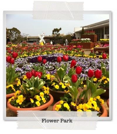 ワンコも一緒に!花の楽園 フラワーパーク~静岡県舘山寺