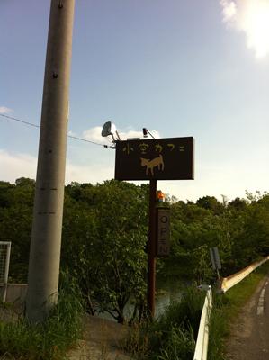 自然と動物がいっぱい!『小空カフェ』~名古屋市守山区