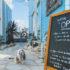 【追記あり】雰囲気バツグン!川沿い最高!人気の『THE CUPS ハーバーカフェ』にドッグランができたぞ!~名古屋市熱田区