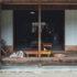 ドライブにも超おすすめ!秘境にある江戸時代の郷土資料館『サトノエキカフェ』が良すぎた!~岐阜県恵那市